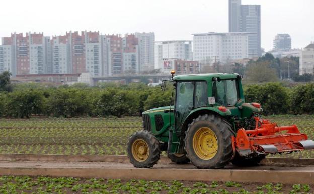 Un tractor, en la huerta de Valencia, el pasado 6 de marzo.